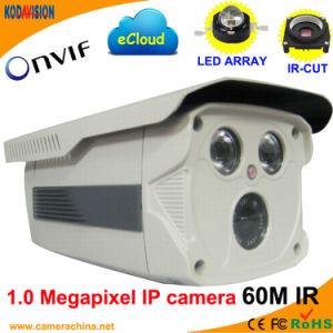 Weatherproof IP66 1.0 Megapixel Onvif Network IP Camera (60M IR) pictures & photos
