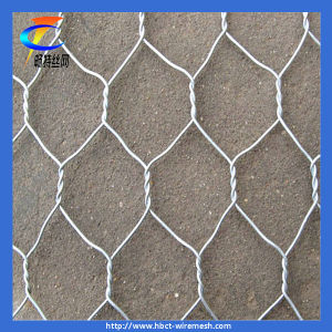 Hot-Dipped Galvanized Hexagonal Wire Netting pictures & photos