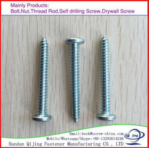 High Quality Csk Phillips Head Self Tapping Screw/Wood Screw/Drilling Screw/Many Kinds of Screw pictures & photos