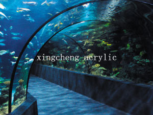 Acrylic Tunnel for Underwater World pictures & photos
