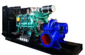 670kw Googol Engine Diesel Generator with Water Pump pictures & photos