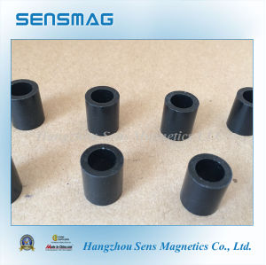 Radial Magnetized Bonded NdFeB Magnet for Motor Generator pictures & photos