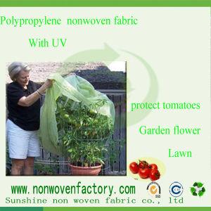 Spunbond Nonwoven Polypropylene Agriculture Landscape Fabric pictures & photos