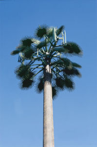 Artifical Plam Tree Tower for Telecom 20m pictures & photos