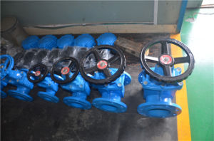 Small Size Custom Black Gate Valve pictures & photos