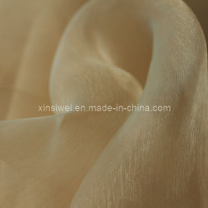 Organza Fabric /Glass Yarn pictures & photos