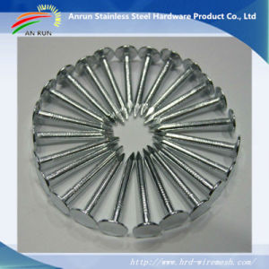 Ring/Twist Shank Umbrella Roofing Nails with Good Galvanized pictures & photos