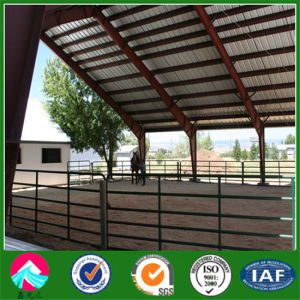Light Steel Structure Horse Stud Farm/Racecourse pictures & photos
