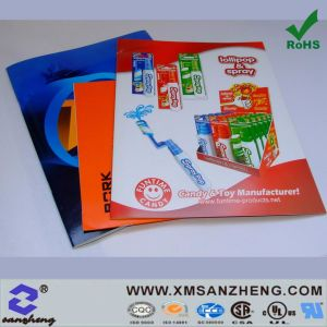 Brochure, Catalogue, Flyer Printing (SZ3028) pictures & photos