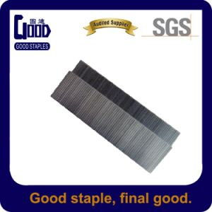 Stainess Steel Industrial P Staples