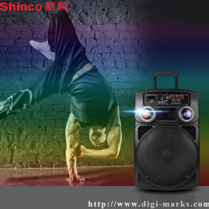 Rechargeable Active DJ PA Multimedia Bluetooth Speaker pictures & photos