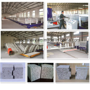 Insulaion Concrete Partition EPS Sandwich Board/Panel Forming Machine/Equipment pictures & photos