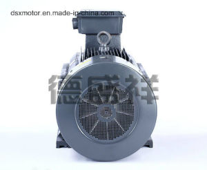 355kw Three Phase Asynchronous Motor pictures & photos