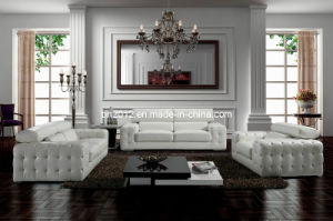 Living Room Genuine Leather Sofa (SBO-2726) pictures & photos