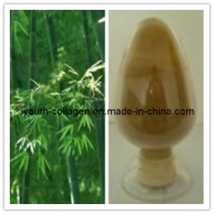 100% natural bamboo leaf extracts pictures & photos