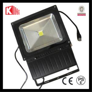 LED Bridgelux 100W Outdoor CE LVD EMC PSE COB LED Landscape Light pictures & photos