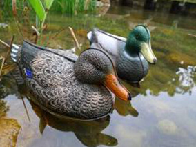 Outdoor Floating Duck Decoys for Hunting Ducks Collapsible Duck