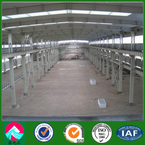 Pre Engineered Structural Steel Workshop Building (XGZ-SSW 219) pictures & photos