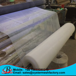 China Plastic Mesh Sheets pictures & photos
