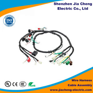 Free Sample Wire Harness for Automobile Medical House appliance Industry pictures & photos