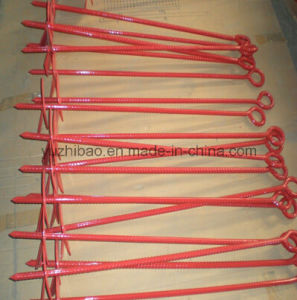 Stainless Steel Helix Ground Anchor, Ground Screw, Ground Screw Anchor pictures & photos