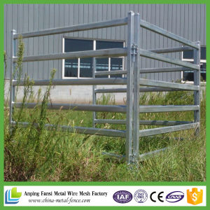 Hot Dipped Galvanized Livestock Yard Panels for Cattle pictures & photos