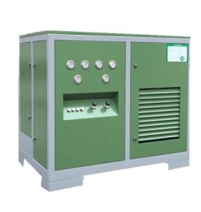 Small CNG Filling Station Compressor pictures & photos