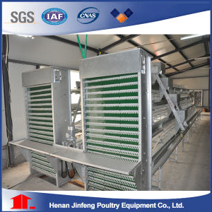 China Supplier a Type Chicken Cage Farm Machinery pictures & photos
