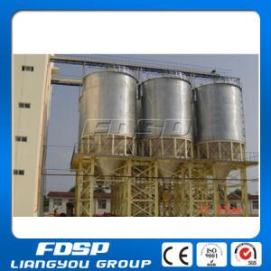 Rational Structure 100 Ton Cement Silo pictures & photos