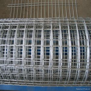 Electro Galvanize Rebar Welded Wire Mesh pictures & photos