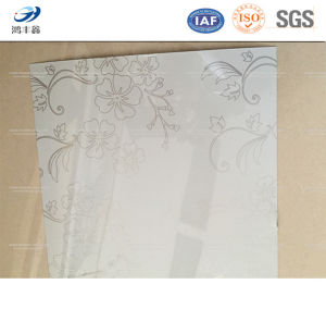 White Flower Print PPGI/PPGL Steel Coils pictures & photos