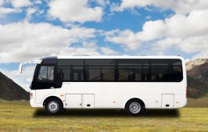Small Type Coach 7-8m 28+1seats pictures & photos
