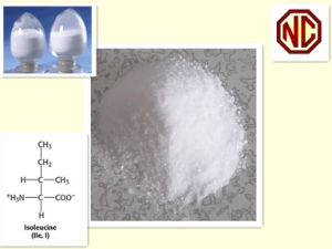 Isoleucine with Best Price Purity pictures & photos