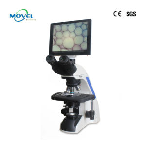 Digital Microscope pictures & photos