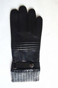 Men′s Fashion Leather Gloves (JYG-24093) pictures & photos