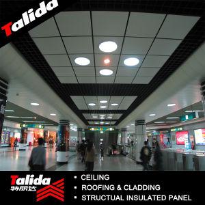Aluminium Ceiling Panel (TLD-J001)