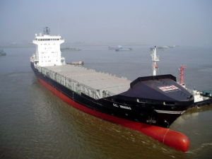 Ocean Shipping From to Tamatave Toamasina Freight Forwarder pictures & photos