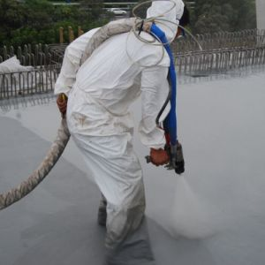 Roof Waterproofing Spray Paint Coating pictures & photos