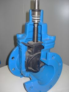 Flanged Gate Valve pictures & photos