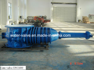 Rising-Stem Double Plate Gate Valve