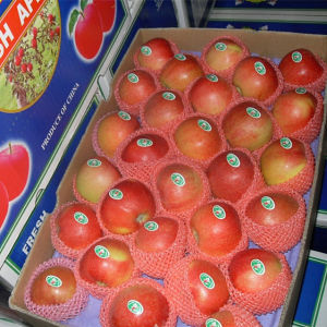 Sweet Red Gala Apple in 20kg Carton pictures & photos