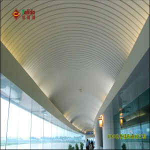 Customized Curve Ceiling (TLD-232)