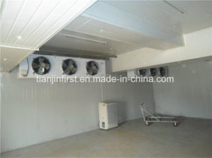 Cold Storage Equipment/Lower Cold Room Price pictures & photos