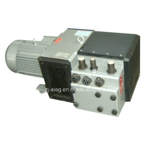 Vacuum Pump and Compressor for Printing and Paper Machine pictures & photos