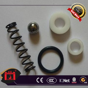 Oil Seal Spring pictures & photos