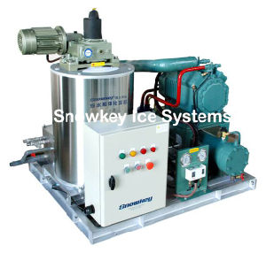 Sea Water Flake Ice Machine (SFM) Commercial Ice Machine pictures & photos