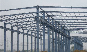 Steel Structure Building/Steel Structure Framework (SS-117) pictures & photos