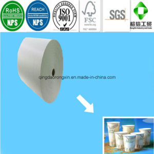 PE Coated Paper for Latte Coffee Cup pictures & photos