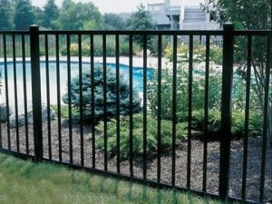 Hot Selling Ornamental Steel Fence S0227