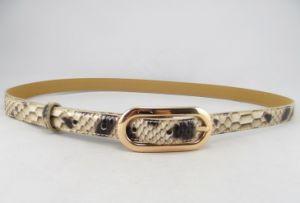 Fashion PU Belt for Women′s Garments (GC2012292)